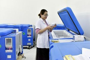 Báo cáo về năng lực trong cung ứng, bảo quản vắc xin phòng COVID-19