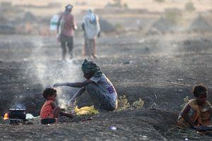 'Xác người bị linh cẩu ăn' trong thảm họa nhân đạo ở Tigray