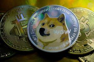 Nhà đầu tư 'cá voi' chi phối thị trường Dogecoin