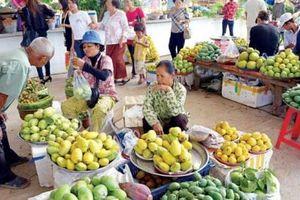 500 tấn xoài tươi đầu tiên của Campuchia được vào Trung Quốc