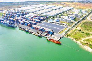 THILOGI - Giải pháp Logistics trọn gói cho nông nghiệp, đưa nông sản Việt ra thế giới