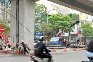 Trồng cây xanh dưới hạ tầng đường sắt đô thị Cát Linh - Hà Đông