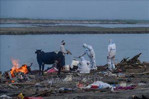 Nhật Bản viện trợ khẩn cấp không hoàn lại 22,5 triệu USD cho Ấn Độ, Myanmar