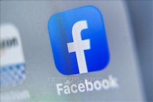 Facebook thất bại trong nỗ lực ngăn chặn cuộc điều tra của giới chức Ireland