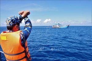 Phát hiện 23 phương tiện vi phạm hành lang an toàn đường ống dẫn khí dưới biển