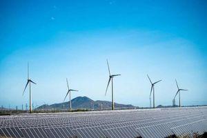 Điện gió Trung Nam chuyển nhượng hơn 35% cổ phần cho Hitachi SE