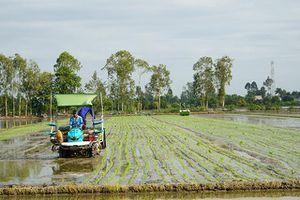 Tái cơ cấu nông nghiệp theo hướng ứng dụng khoa học - kỹ thuật và chế biến sâu