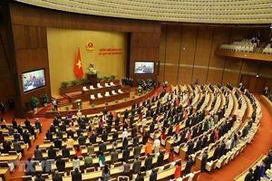 Đại đa số các tầng lớp nhân dân quan tâm đến bầu cử đại biểu Quốc hội khóa XV