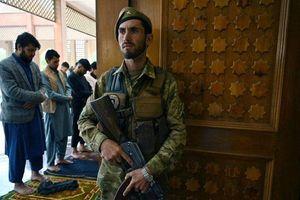Lệnh ngừng bắn tại Afghanistan: Khoảng lặng tạm thời