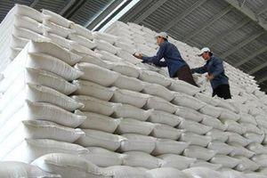 Nhập kho 161.500 tấn gạo dự trữ quốc gia năm 2021