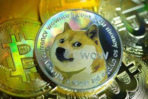 Trở thành triệu phú nhờ chi toàn bộ tiền tiết kiệm mua Dogecoin