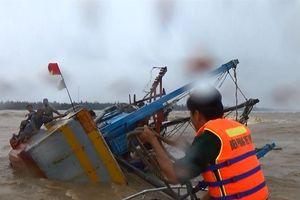 Truy tìm tàu hàng đâm chìm tàu cá làm hai thuyền viên mất tích