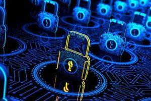 Thêm một lỗ hổng bảo mật nguy hiểm của Microsoft được chuyên gia 9X người Việt Nam phát hiện