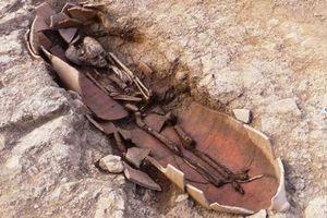 Phát hiện nhiều mộ cổ, hài cốt được chôn trong bình lớn cực kỳ 'độc lạ'