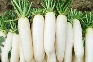 Những siêu thực phẩm chống ung thư, chợ Việt Nam mùa nào cũng sẵn