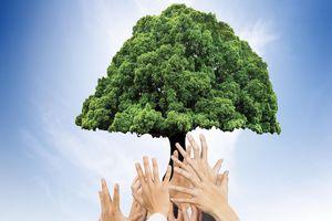 Góc banker: Hành trình trưởng thành…