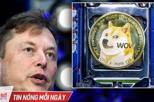Dogecoin bị vượt mặt bất chấp nỗ lực 'bơm thổi' của Elon Musk