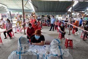 Đà Nẵng sẽ xét nghiệm gần 66.000 người đại diện gia đình trước bầu cử