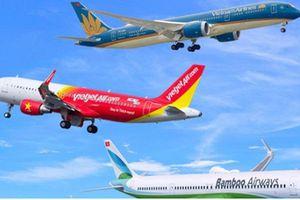 Đề xuất bỏ trần giá vé máy bay: Quy luật thị trường hay cơ hội 'phá giá'?