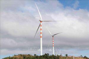 Đắk Lắk: 69 người nước ngoài tại các dự án điện gió chưa có giấy phép lao động