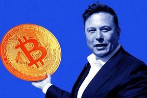 Giá Bitcoin rớt thảm sau khi Elon Musk ngầm ám chỉ Tesla đã 'bán sạch'