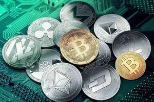 Bitcoin tiếp tục rơi thẳng đứng, tiền ảo đỏ sàn