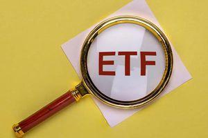 VNM ETF và FTSE Vietnam ETF sẽ thêm cổ phiếu nào trong kỳ cơ cấu tháng 6?