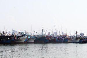 Khánh Hòa: Có 4 khu neo đậu tránh trú bão cho tàu cá