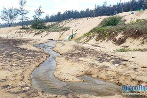 Nên giảm diện tích hồ nuôi tôm trên cát