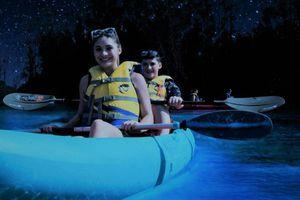 Chuyến du ngoạn 'chèo thuyền qua dải ngân hà' ở Mỹ
