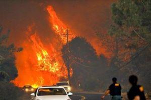 Hạn hán tồi tệ nhất lịch sử bang California
