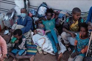 WHO cảnh báo về khủng hoảng tại vùng Tigray của Ethiopia