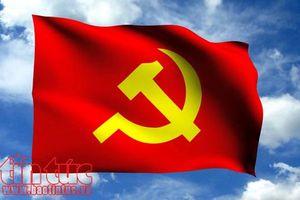 TP Hồ Chí Minh: Trao Huy hiệu Đảng cho hơn 2.100 đảng viên