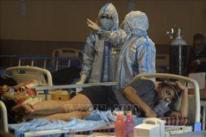 Toàn thế giới đã ghi nhận trên 164,4 triệu ca nhiễm virus SARS-CoV-2
