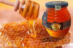 Mật ong Việt bị điều tra chống bán phá giá tại Hoa Kỳ