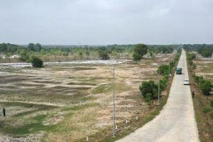 DN cổ phần hóa có trách nhiệm lập báo cáo hiện trạng quản lý đất