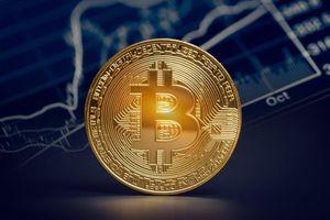 Các nhà quản lý tài sản bày tỏ sự thận trọng đối với Bitcoin sau những hành động của Elon Musk