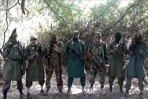 Quân đội Niger tiêu diệt nhiều phần tử Boko Haram