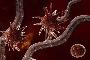 Công nghệ khiến khối u ung thư tự diệt có thể áp dụng để điều trị COVID-19