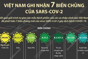 Việt Nam ghi nhận 7 biến chủng của SARS-CoV-2