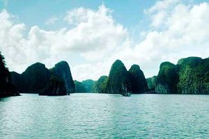 Chiêm ngưỡng vẻ đẹp lãng mạn của Vịnh Lan Hạ, Cát Bà