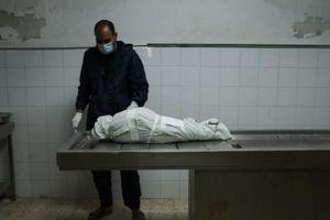 Xung đột Israel-Hamas: Nỗ lực quốc tế đang tới đâu?