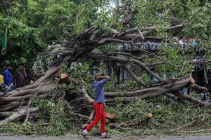 Hơn 90 người Ấn Độ thiệt mạng vì siêu bão 'quái vật' Tauktae