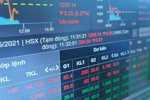 Độ lệch giữa VN-Index và VN30 ngày càng lớn