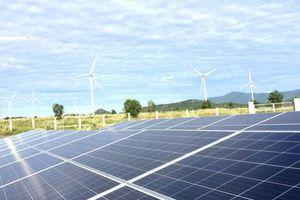 Mua bán dự án năng lượng tái tạo: Làm gì để đảm bảo an ninh năng lượng?