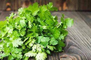 Những lợi ích tuyệt vời của rau mùi