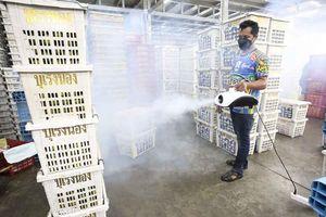 Thái Lan triển khai tiêm vaccine trên diện rộng từ ngày 1-6