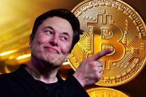Chê Bitcoin gây ô nhiễm môi trường, Elon Musk có dự án thay thế?