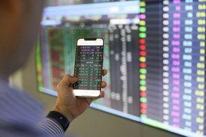 Cổ phiếu vốn hóa vừa và nhỏ bứt phá, VN-Index có thêm gần 6 điểm