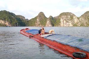 Liên tiếp cứu hộ cứu nạn phương tiện và ngư dân gặp nạn trên biển